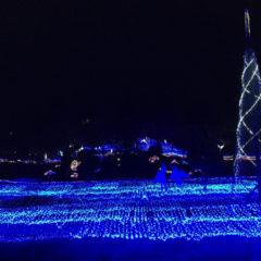 るり渓温泉と京都イルミエールに行ってきました。